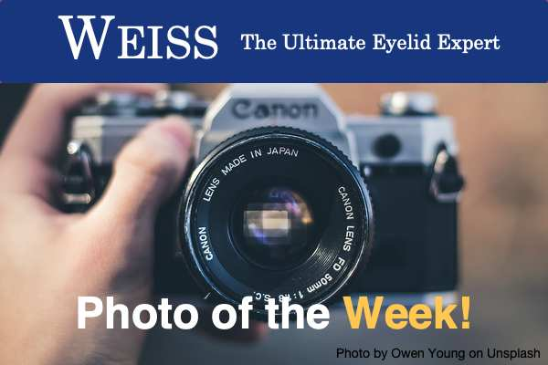 Photo of the Week!